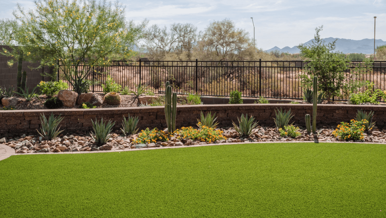 5 Desert Landscaping Ideas to Upgrade Your Property